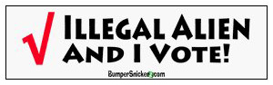http://elenaives.com/wp-content/uploads/2010/08/illegal-alien-vote1.jpg